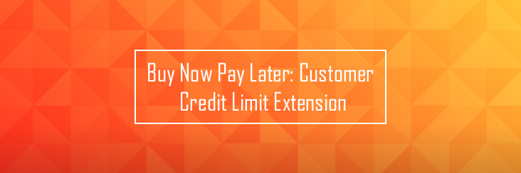 Buy Now Pay Later – Customer Credit Limit Extension