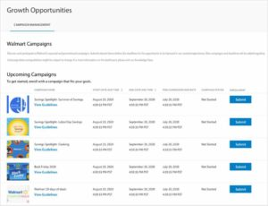 Walmart Marketplace in 2020- Campaign Management