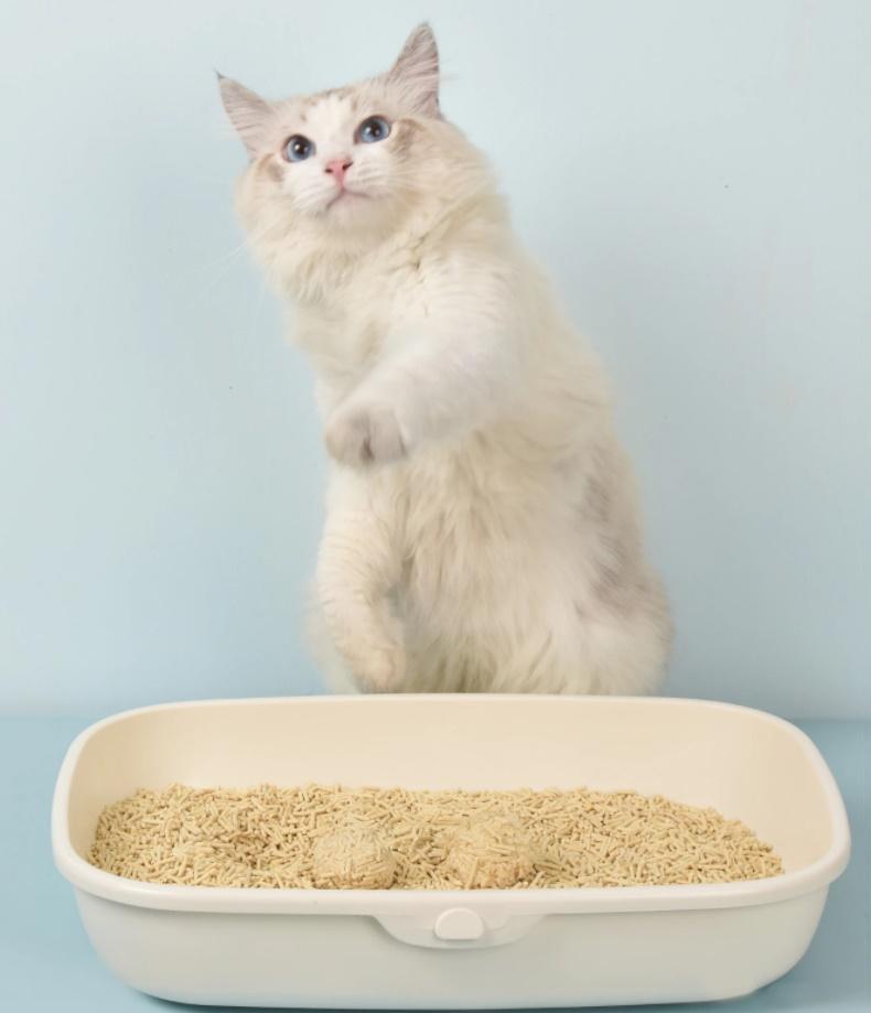 cat litter box/mats